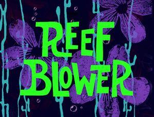 SB_2515-126_REEF_BLOWER